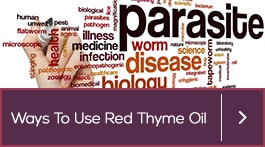 benefits of red thyme essential oil