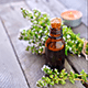 7 Ways To Treat Yourself With Red Thyme Essential Oil